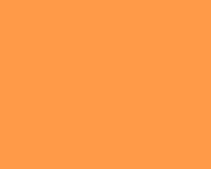 pms 804 orange